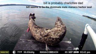 manaco-raft-13
